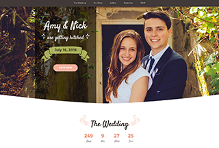 Matrimony - Wedding Template