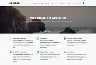 Apeiron WP Theme