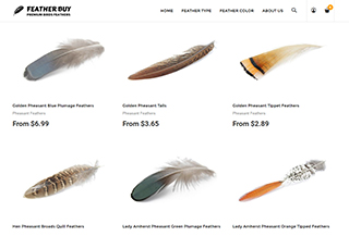 Feather Buy