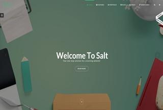Salt PREMIUM THEME