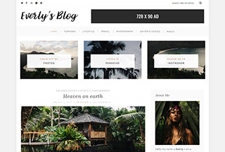 Everly - Free WP Blog Theme