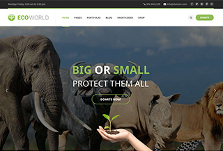 Eco World Premium Theme